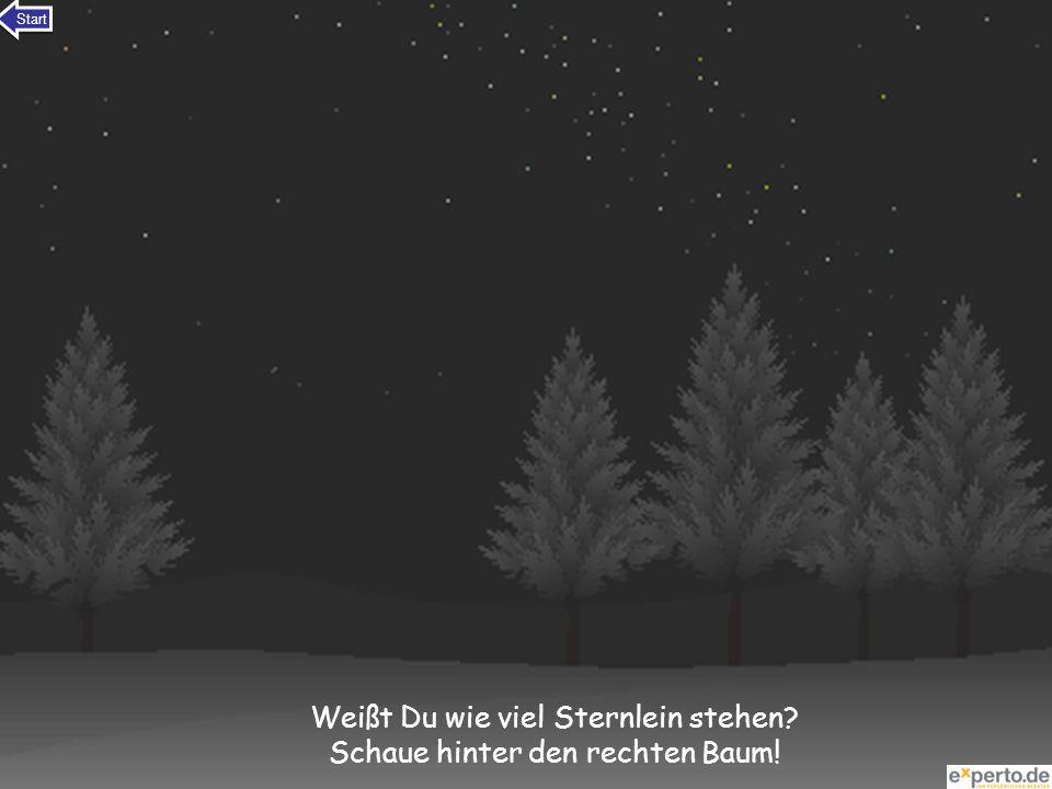 Weißt Du wie viel Sternlein stehen Schaue hinter den rechten Baum!