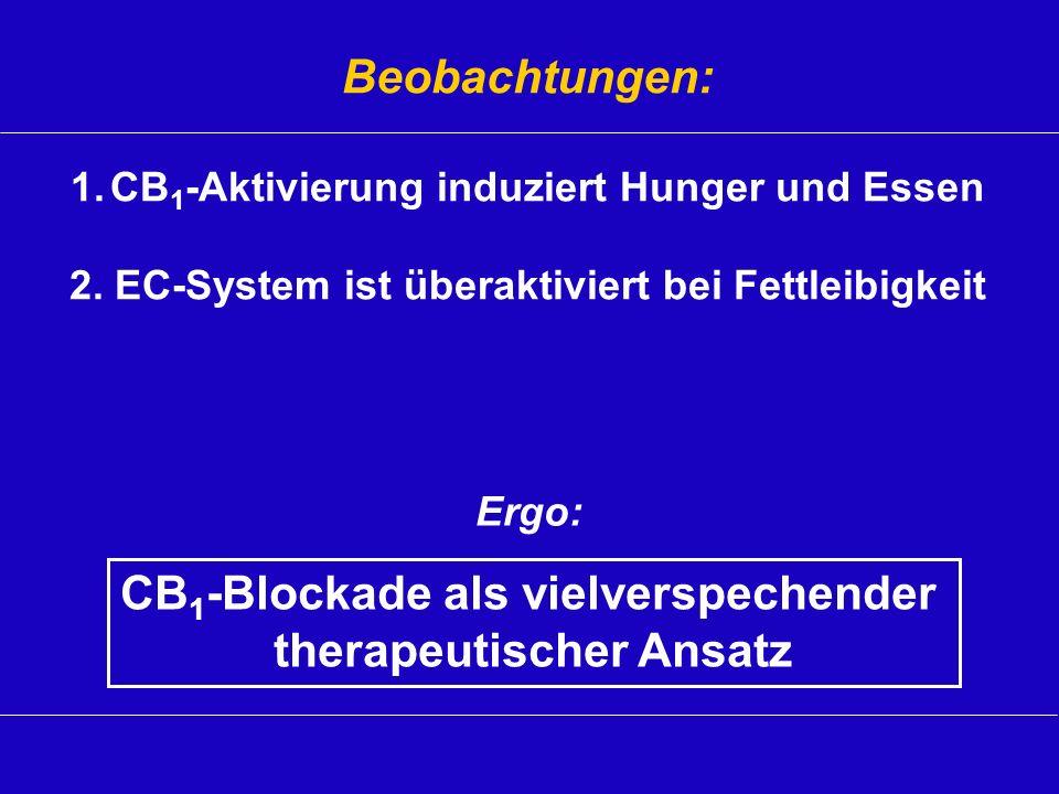 CB1-Blockade als vielverspechender therapeutischer Ansatz