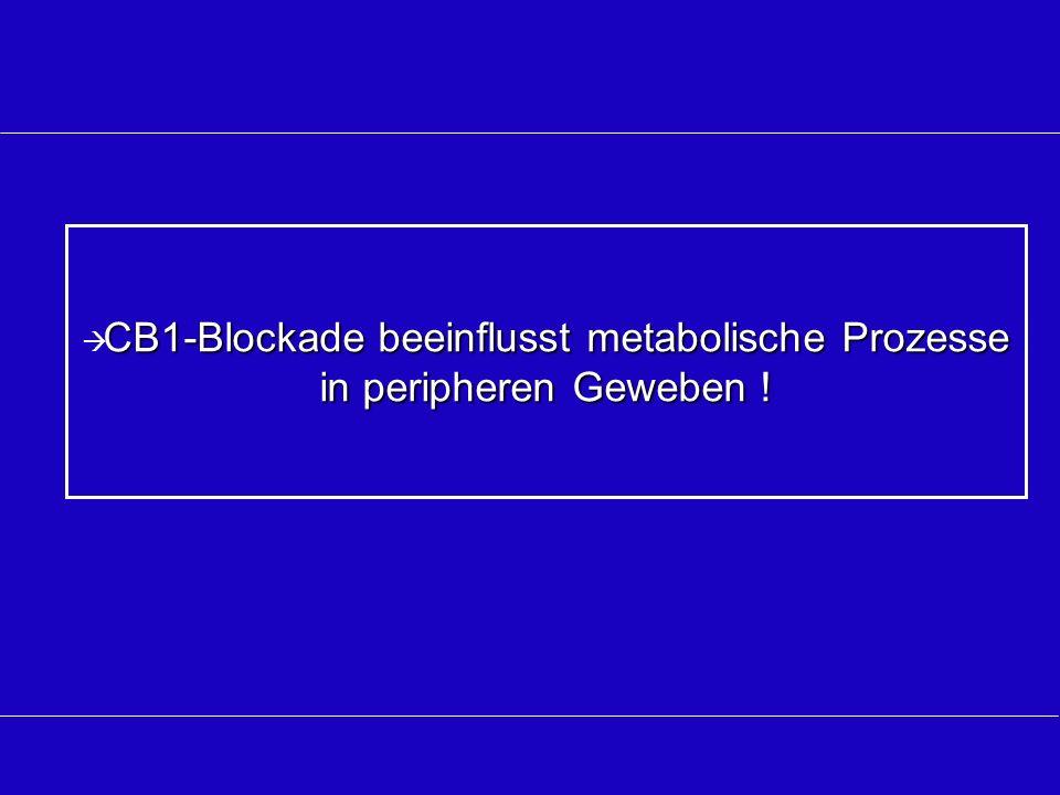 CB1-Blockade beeinflusst metabolische Prozesse in peripheren Geweben !