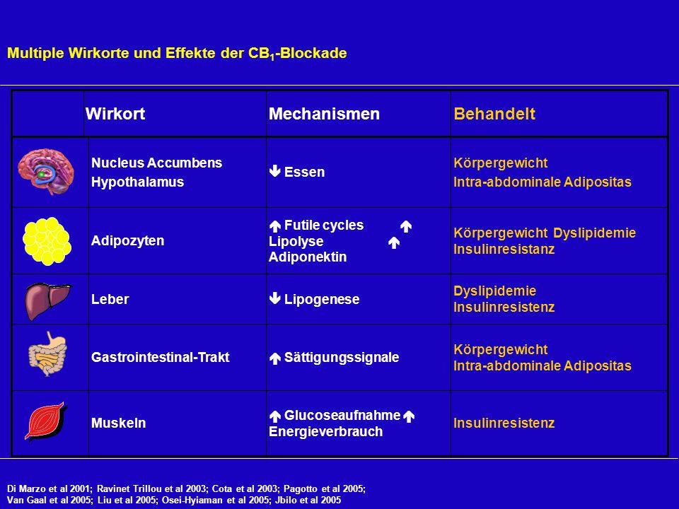 Multiple Wirkorte und Effekte der CB1-Blockade