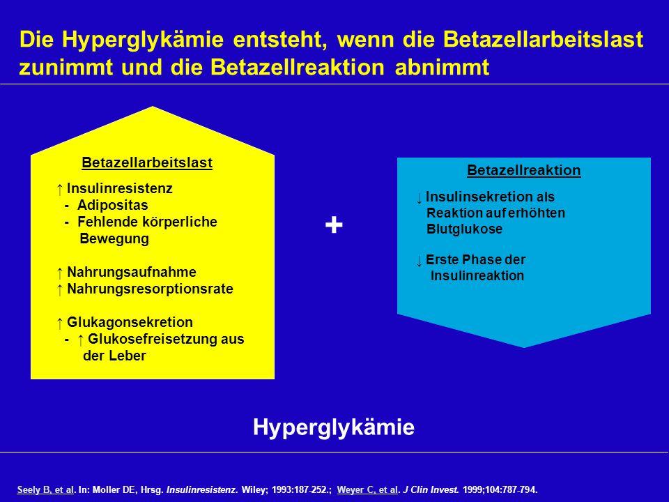 Die Hyperglykämie entsteht, wenn die Betazellarbeitslast zunimmt und die Betazellreaktion abnimmt