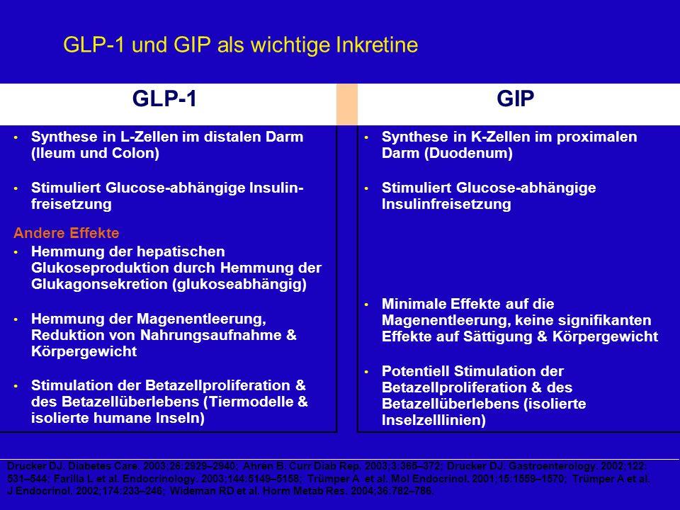 GLP-1 und GIP als wichtige Inkretine