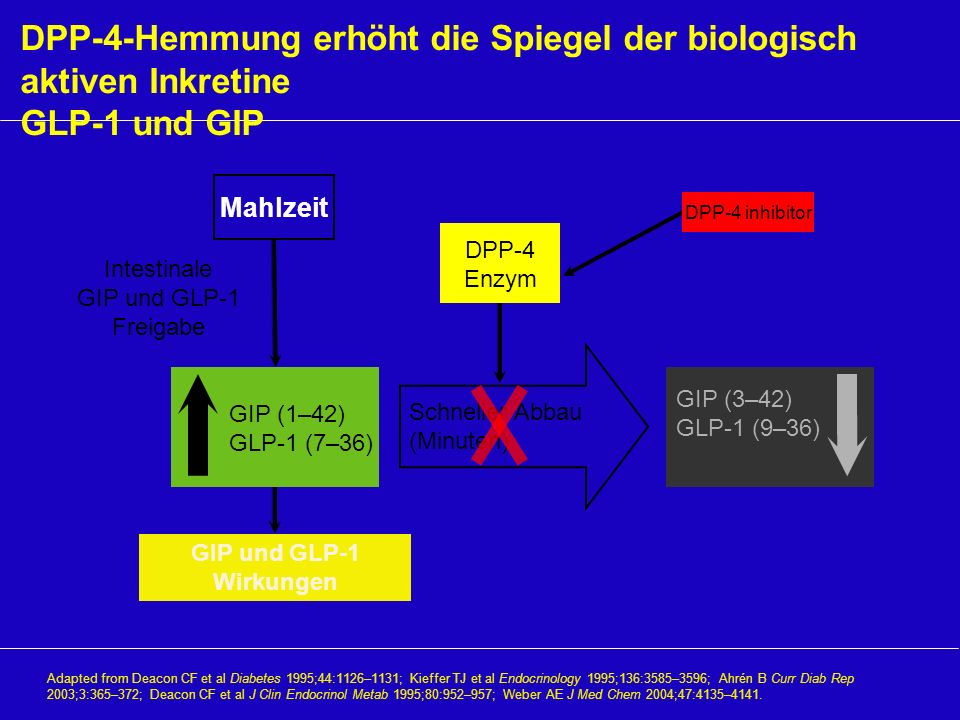 Intestinale GIP und GLP-1 Freigabe