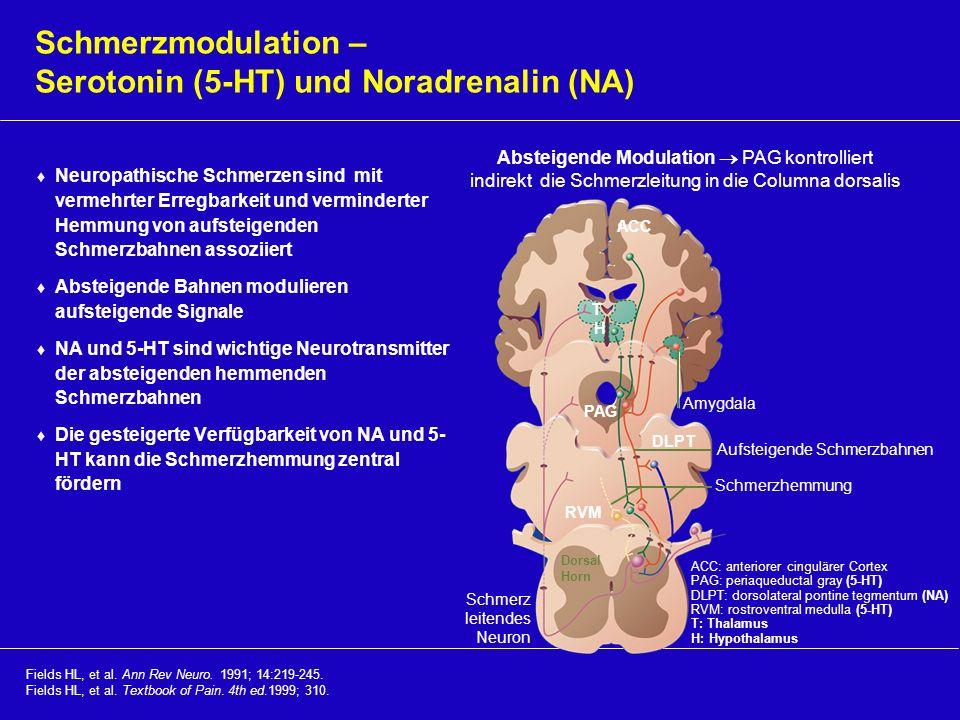 Schmerzmodulation – Serotonin (5-HT) und Noradrenalin (NA)