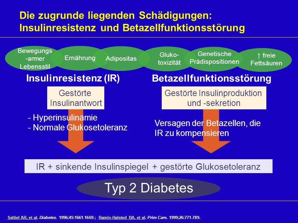 Die zugrunde liegenden Schädigungen: Insulinresistenz und Betazellfunktionsstörung