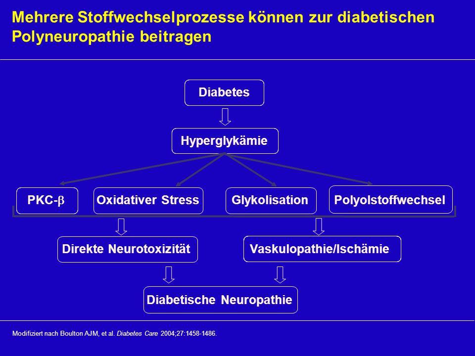 Mehrere Stoffwechselprozesse können zur diabetischen Polyneuropathie beitragen