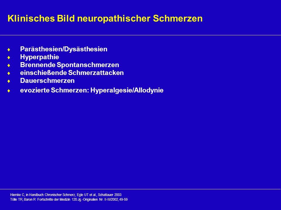 Klinisches Bild neuropathischer Schmerzen