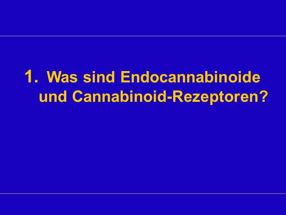 1. Was sind Endocannabinoide und Cannabinoid-Rezeptoren