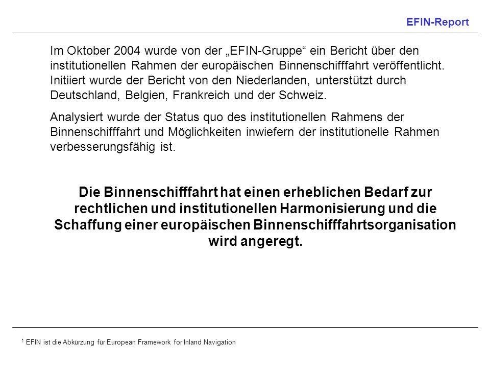 EFIN-Report