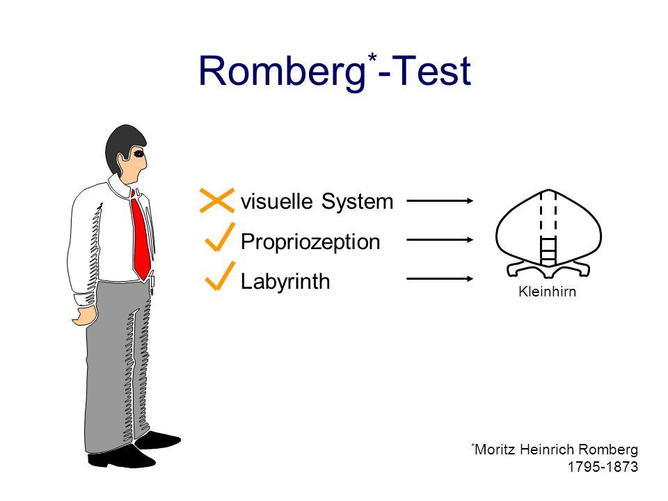 Romberg*-Test visuelle System Propriozeption Labyrinth Kleinhirn