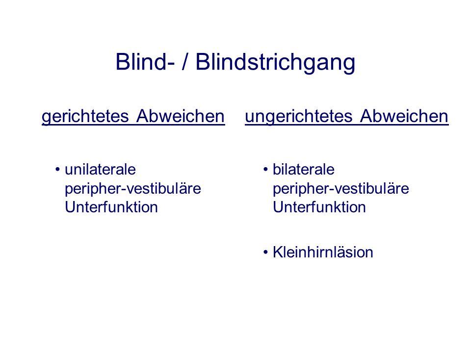 Blind- / Blindstrichgang