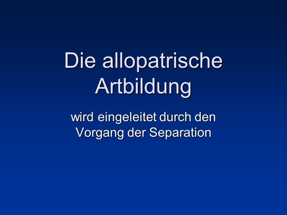 Die allopatrische Artbildung