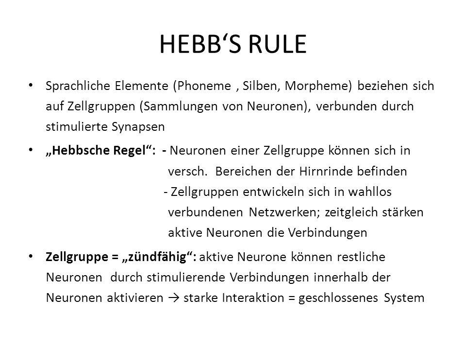 HEBB'S RULE