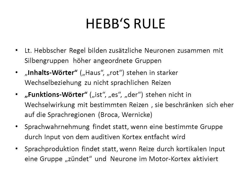 HEBB'S RULE Lt. Hebbscher Regel bilden zusätzliche Neuronen zusammen mit Silbengruppen höher angeordnete Gruppen.