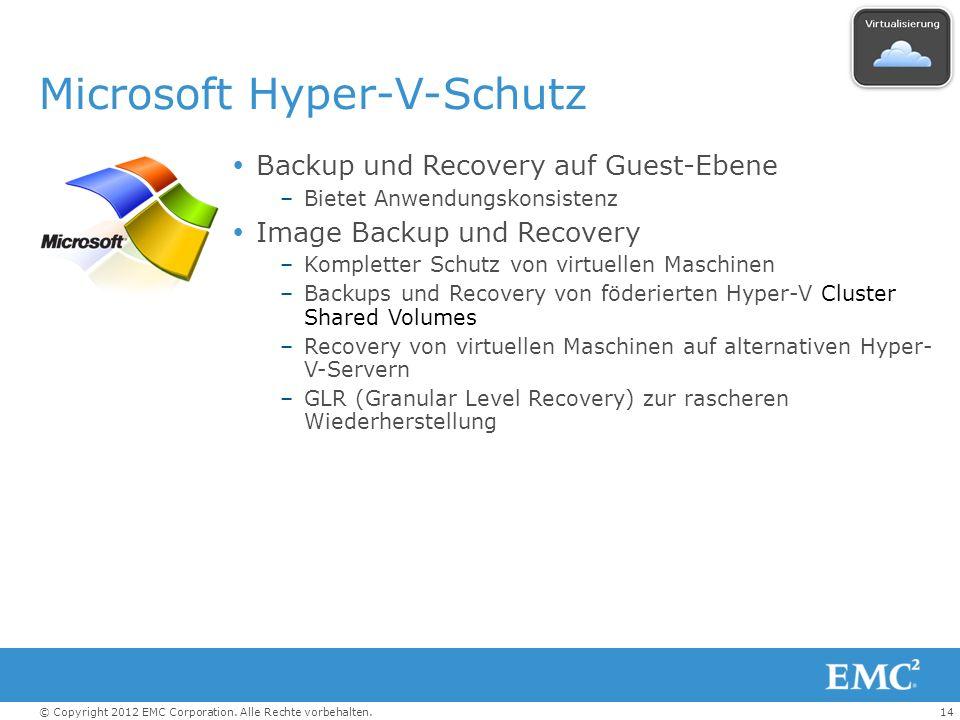 Microsoft Hyper-V-Schutz