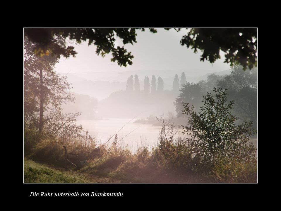 Die Ruhr unterhalb von Blankenstein