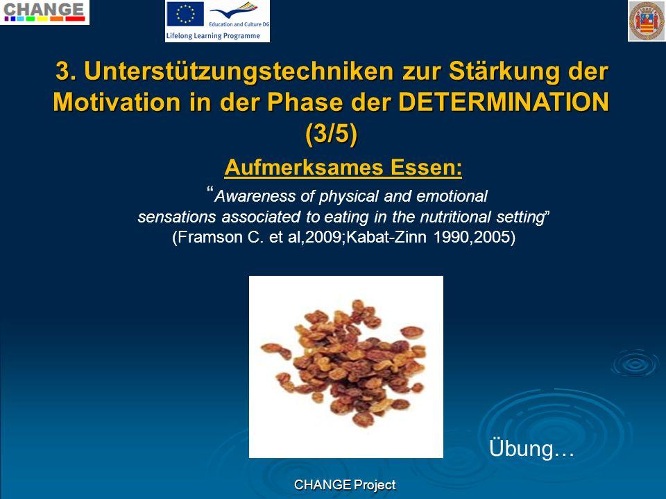 3. Unterstützungstechniken zur Stärkung der Motivation in der Phase der DETERMINATION (3/5)