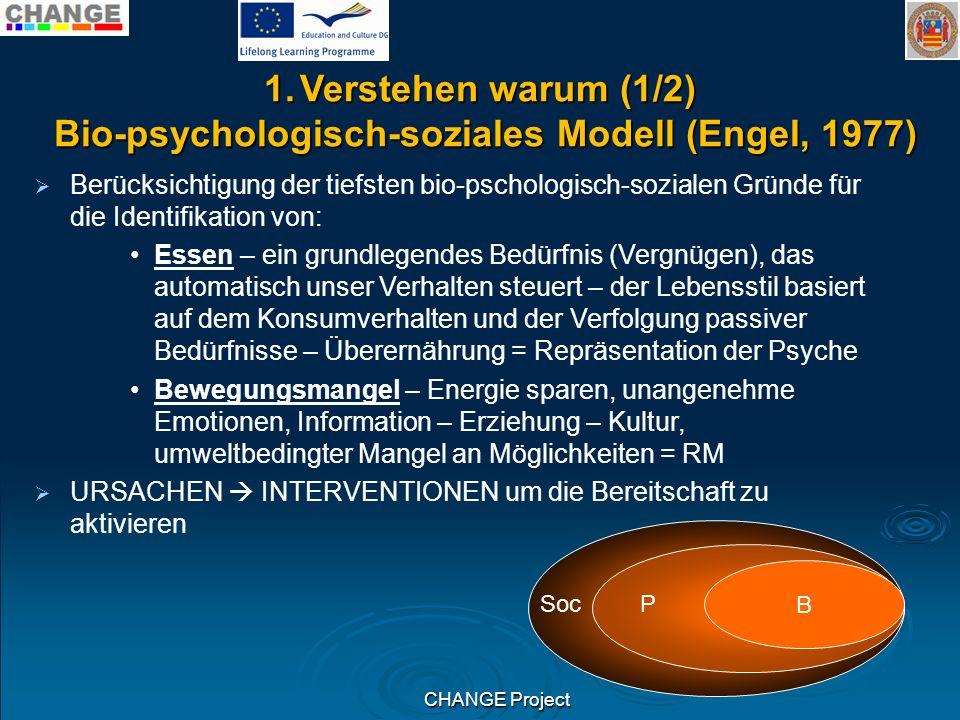 Bio-psychologisch-soziales Modell (Engel, 1977)