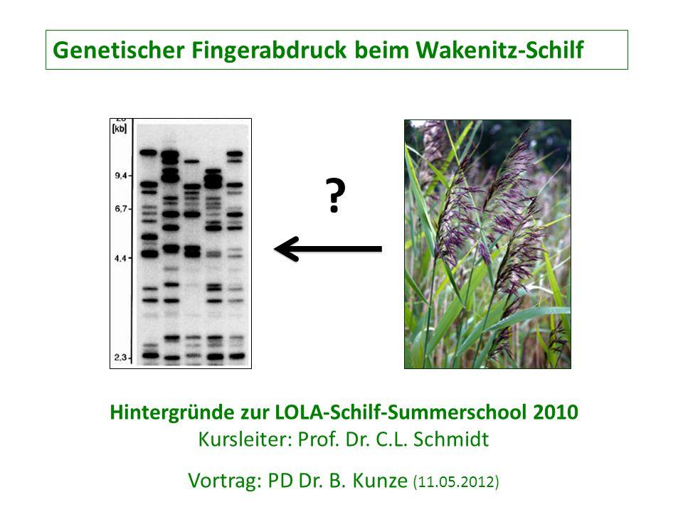Vortrag: PD Dr. B. Kunze (11.05.2012)