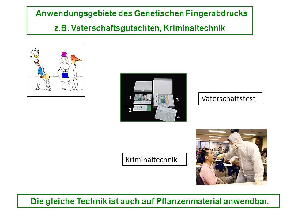 Anwendungsgebiete des Genetischen Fingerabdrucks