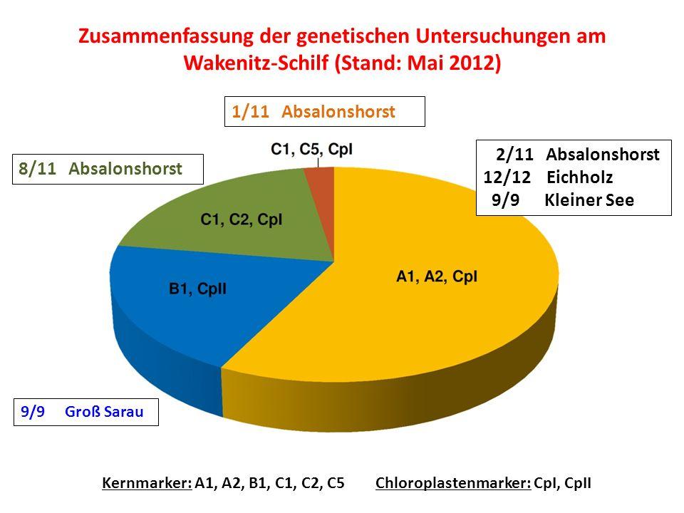 Zusammenfassung der genetischen Untersuchungen am