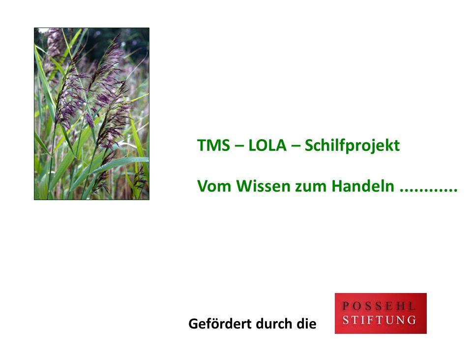 TMS – LOLA – Schilfprojekt Vom Wissen zum Handeln ............