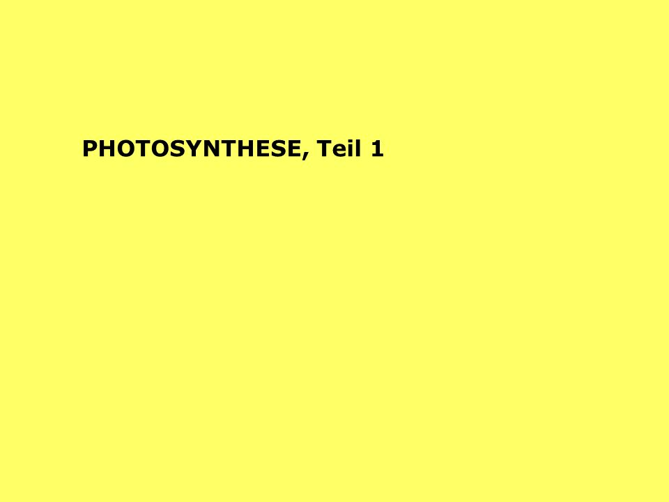 PHOTOSYNTHESE, Teil 1