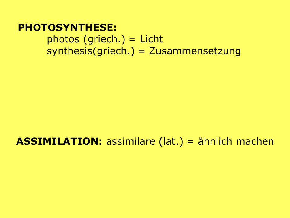 PHOTOSYNTHESE: photos (griech.) = Licht synthesis(griech.) = Zusammensetzung.