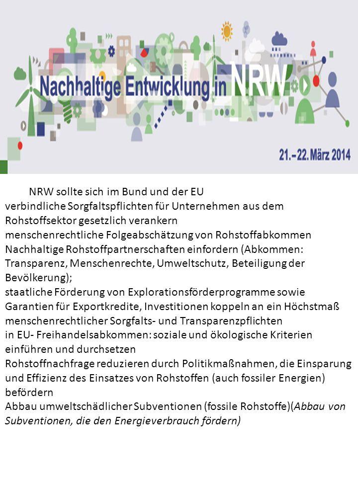 NRW sollte sich im Bund und der EU