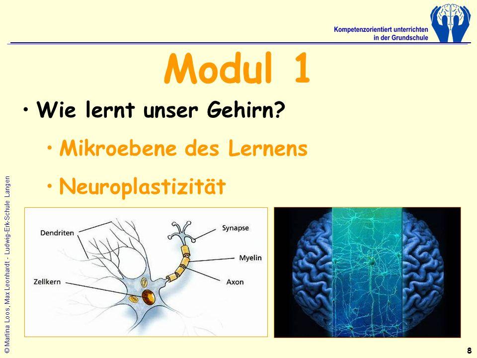 Modul 1 Wie lernt unser Gehirn Mikroebene des Lernens