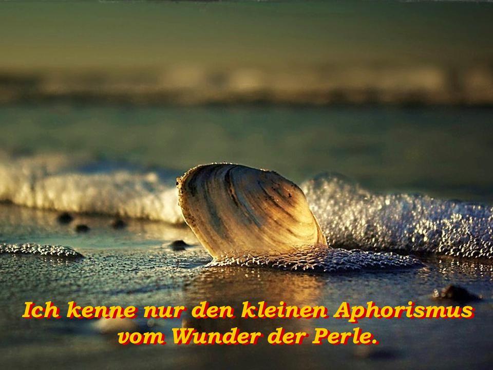 Ich kenne nur den kleinen Aphorismus vom Wunder der Perle.