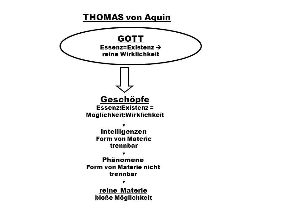THOMAS von Aquin GOTT Geschöpfe Intelligenzen Phänomene reine Materie