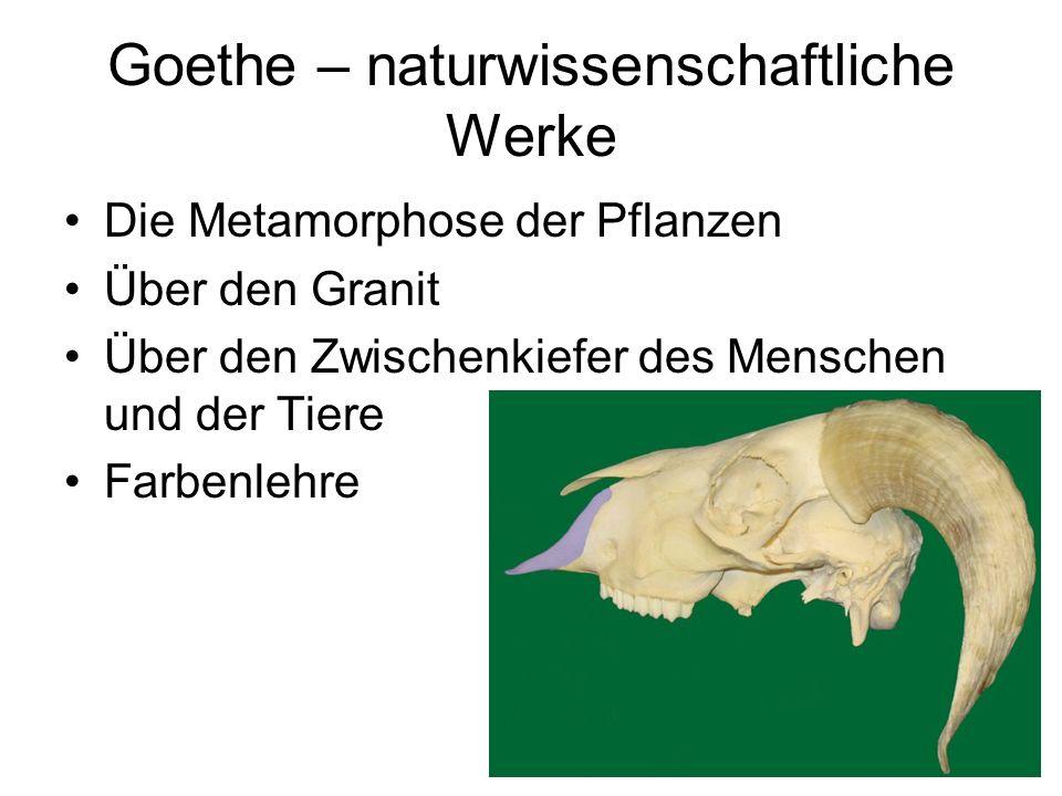 Goethe – naturwissenschaftliche Werke