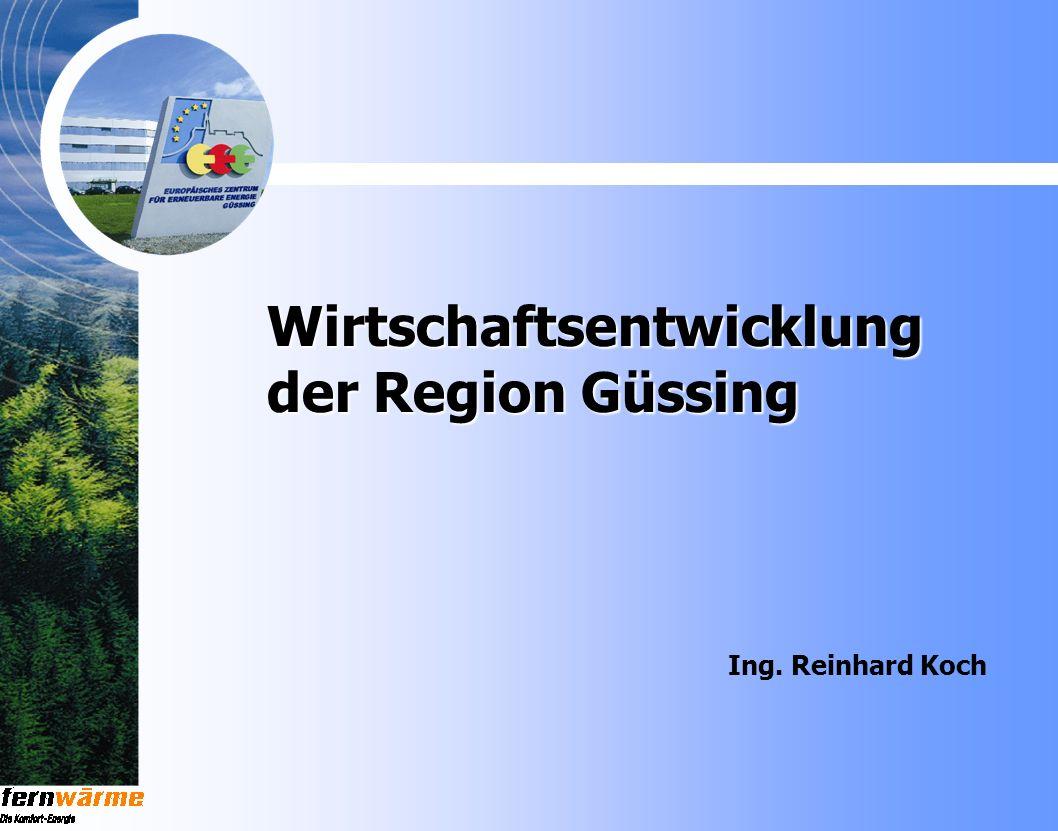 Wirtschaftsentwicklung der Region Güssing