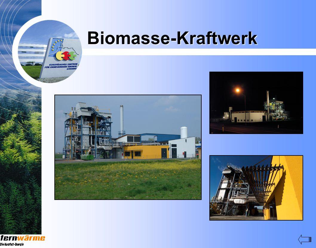 Biomasse-Kraftwerk