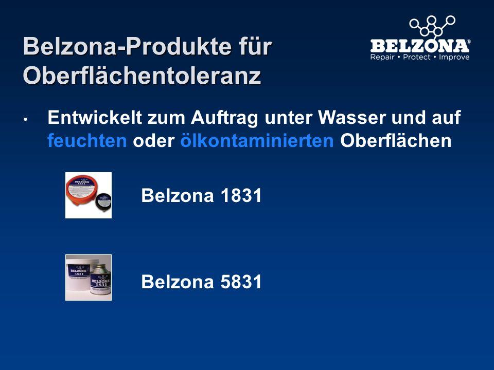 Belzona-Produkte für Oberflächentoleranz