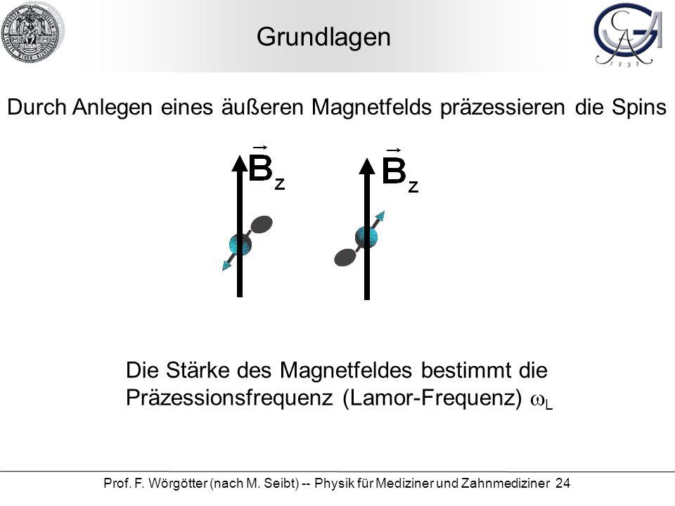 Grundlagen Durch Anlegen eines äußeren Magnetfelds präzessieren die Spins.