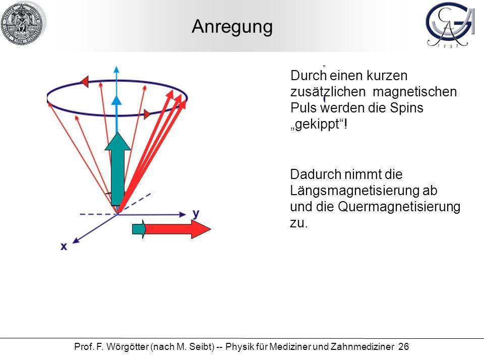 """Anregung Durch einen kurzen zusätzlichen magnetischen Puls werden die Spins """"gekippt !"""