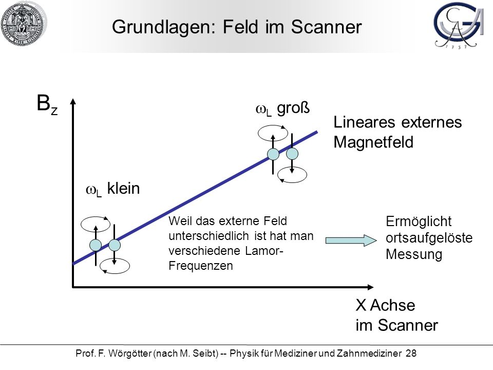 Grundlagen: Feld im Scanner