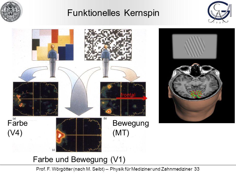 Funktionelles Kernspin