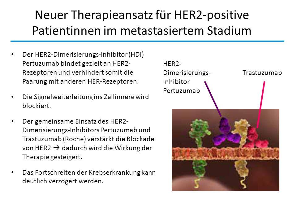 Neuer Therapieansatz für HER2-positive Patientinnen im metastasiertem Stadium