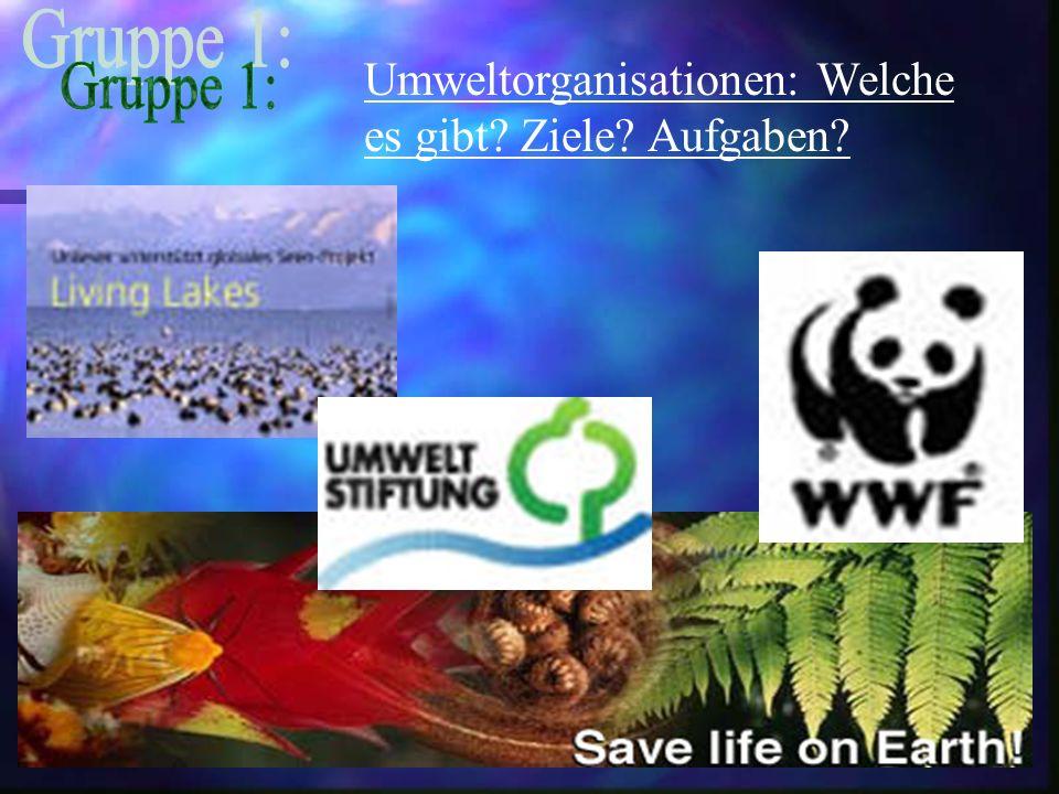 Umweltorganisationen: Welche es gibt Ziele Aufgaben