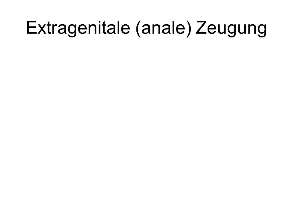 Extragenitale (anale) Zeugung