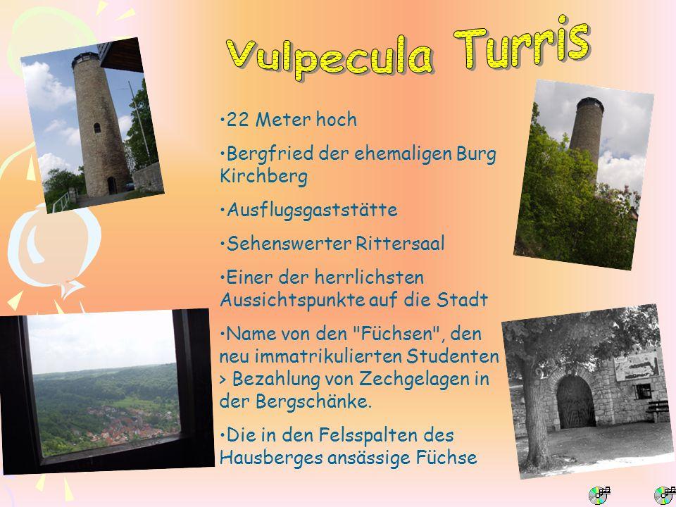 Vulpecula Turris 22 Meter hoch Bergfried der ehemaligen Burg Kirchberg