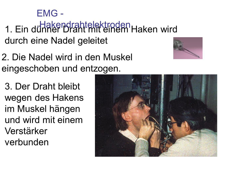 EMG - .Hakendrahtelektroden