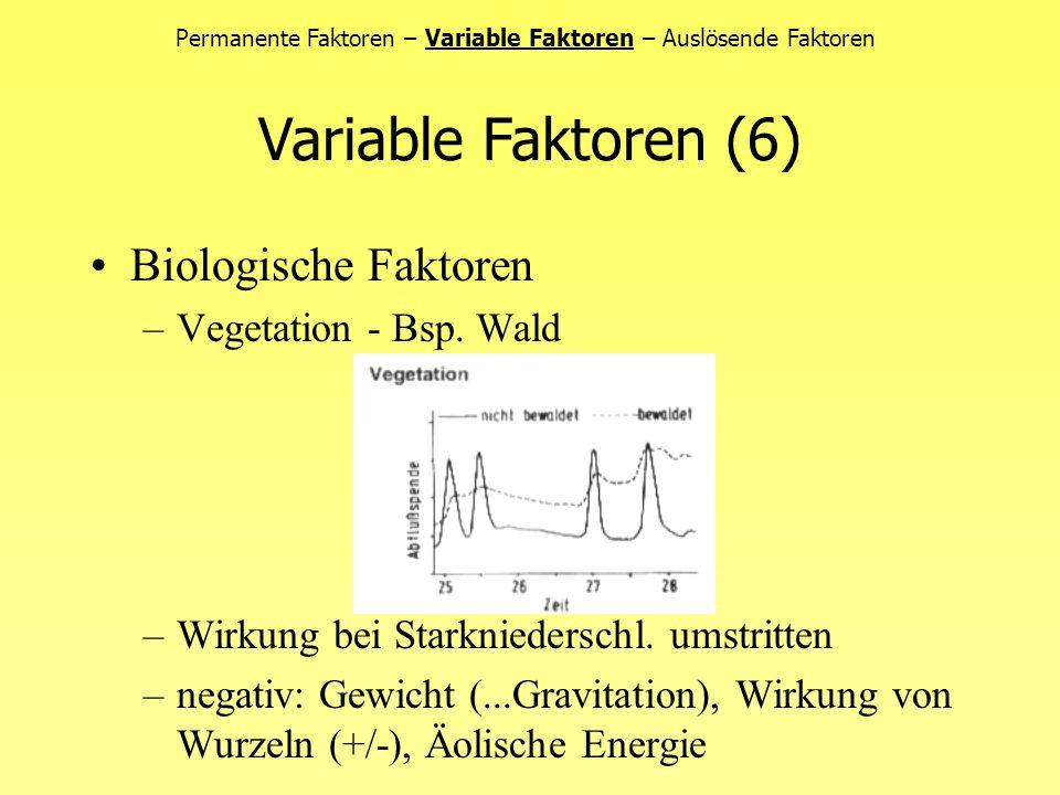 Permanente Faktoren – Variable Faktoren – Auslösende Faktoren