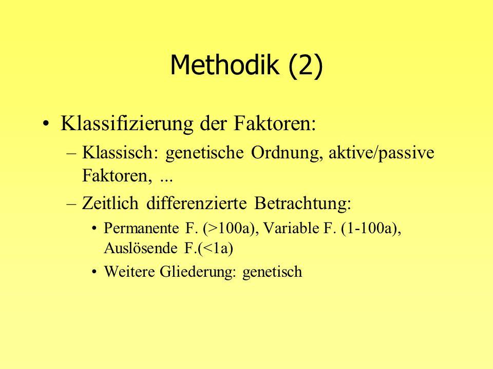 Methodik (2) Klassifizierung der Faktoren: