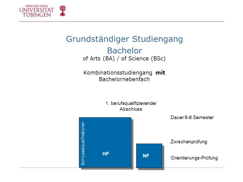 Grundständiger Studiengang Bachelor of Arts (BA) / of Science (BSc)