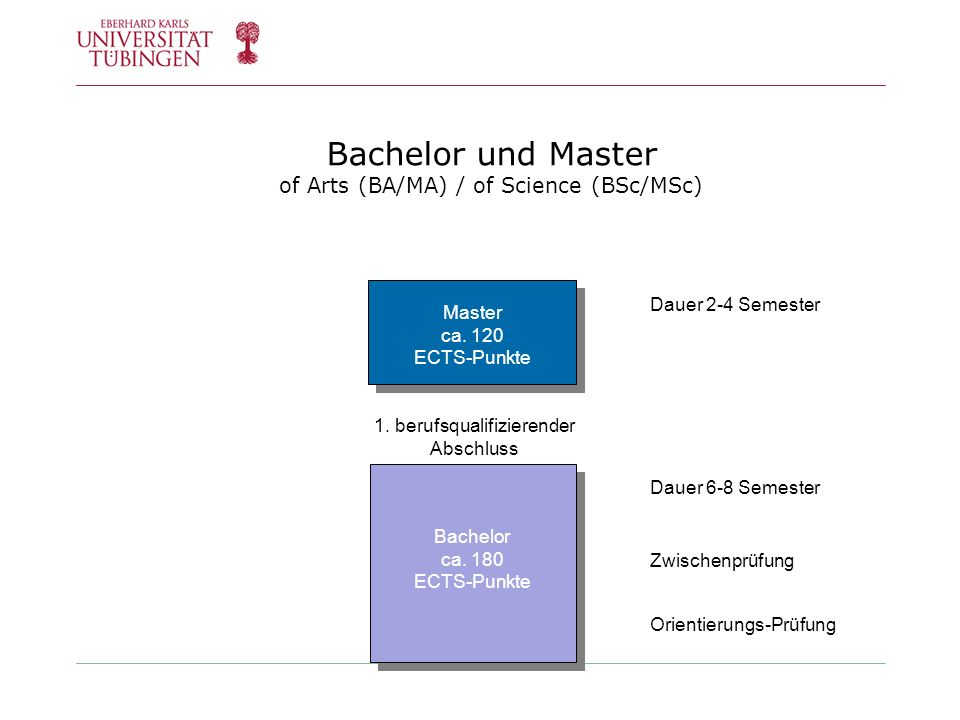 Bachelor und Master of Arts (BA/MA) / of Science (BSc/MSc)