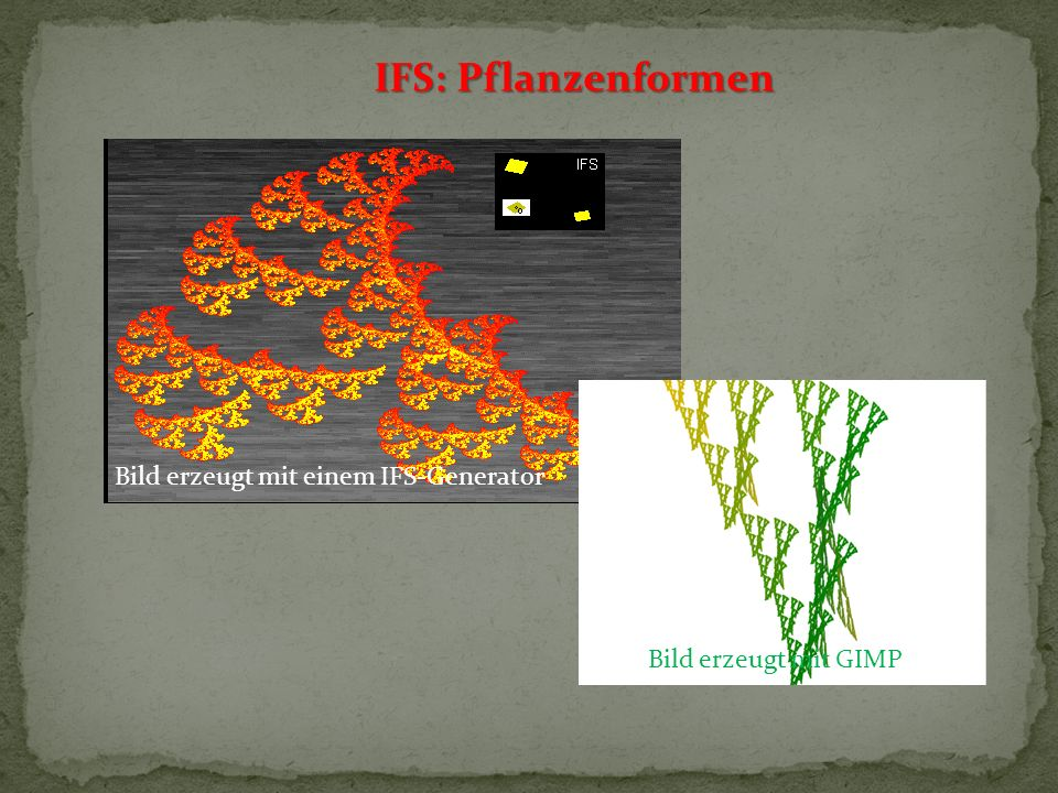 IFS: Pflanzenformen Bild erzeugt mit einem IFS-Generator